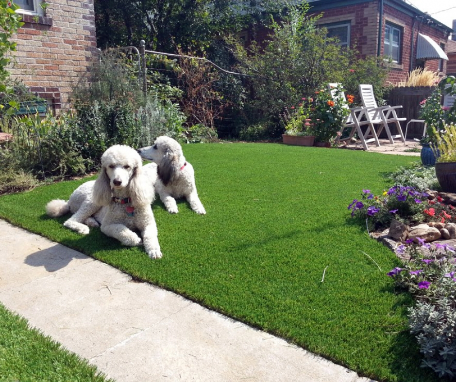 Artificial Grass Installation In Ukiah, California