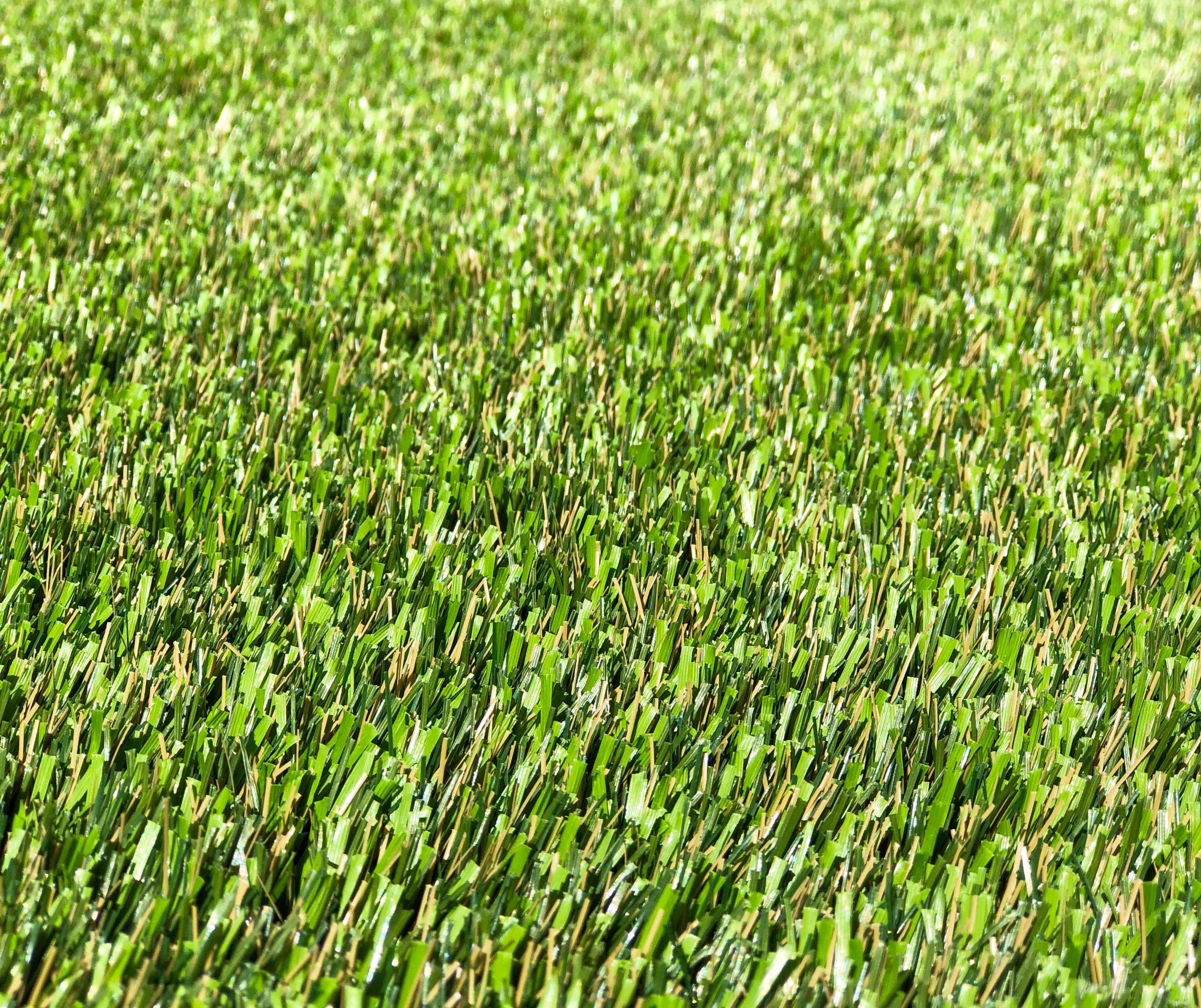 Featuring Super Natural 80 Synthetic Turf