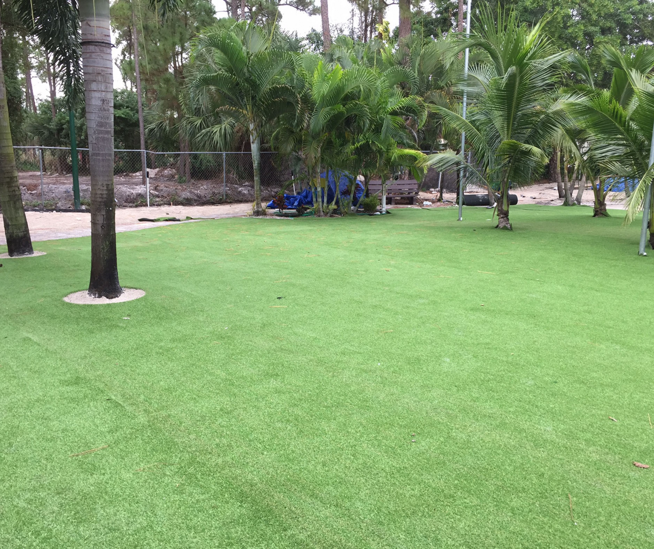 Landscape Design with Synthetic Grass Ceres, California