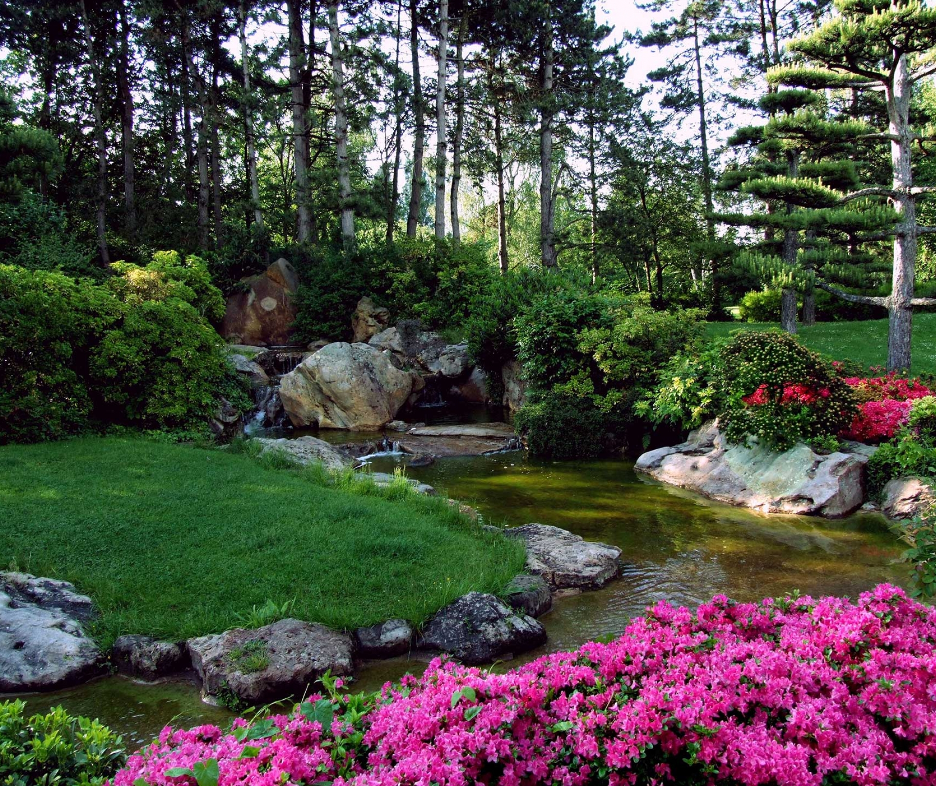 Basic principles of landscape design