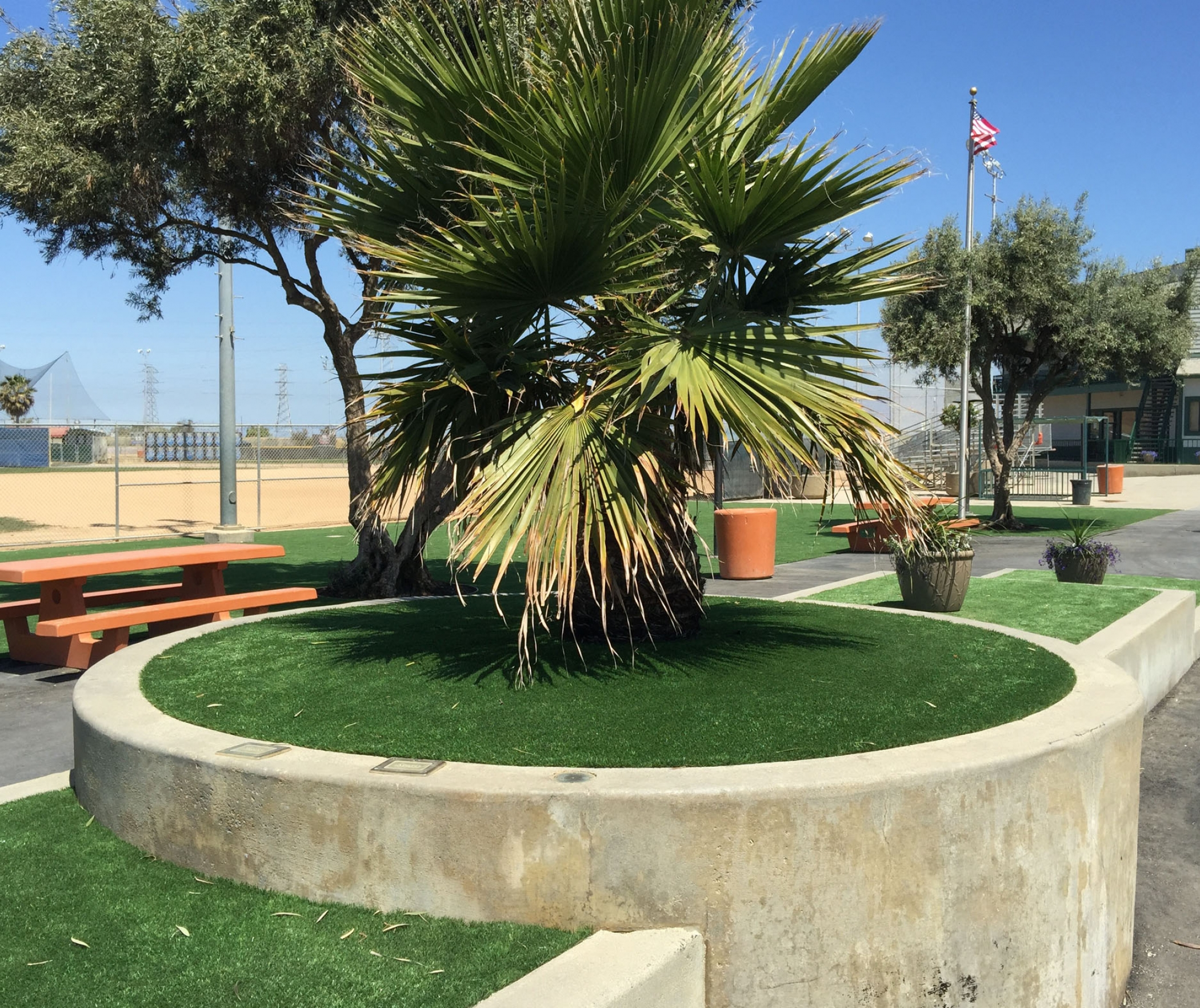 Outdoor Carpet, Artificial Grass Pico Rivera, California