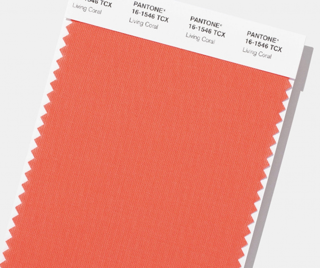 Pantone announces 2019 color of the year, and its basically a big hug