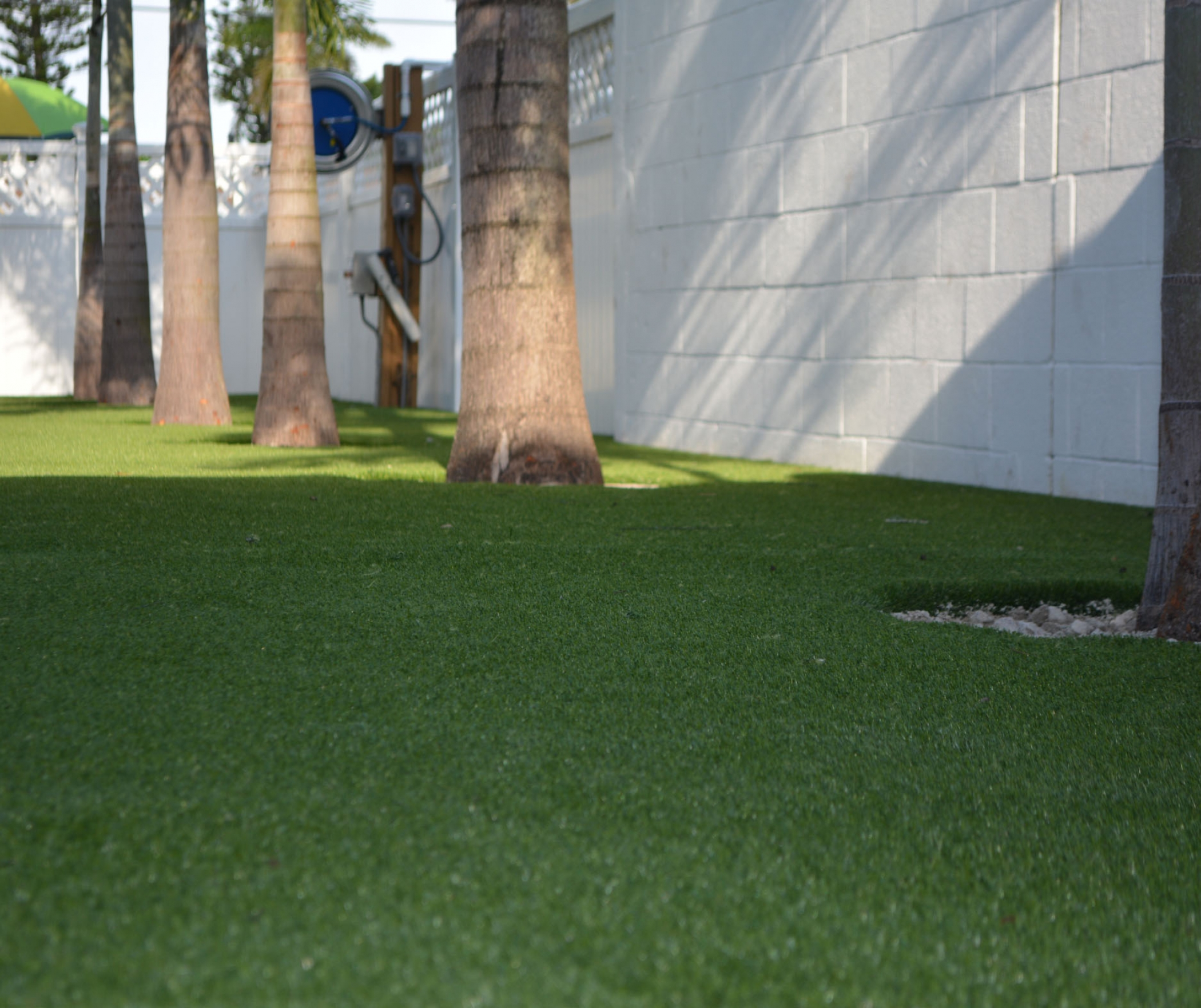 Artificial Grass Around Trees. Lakewood, California