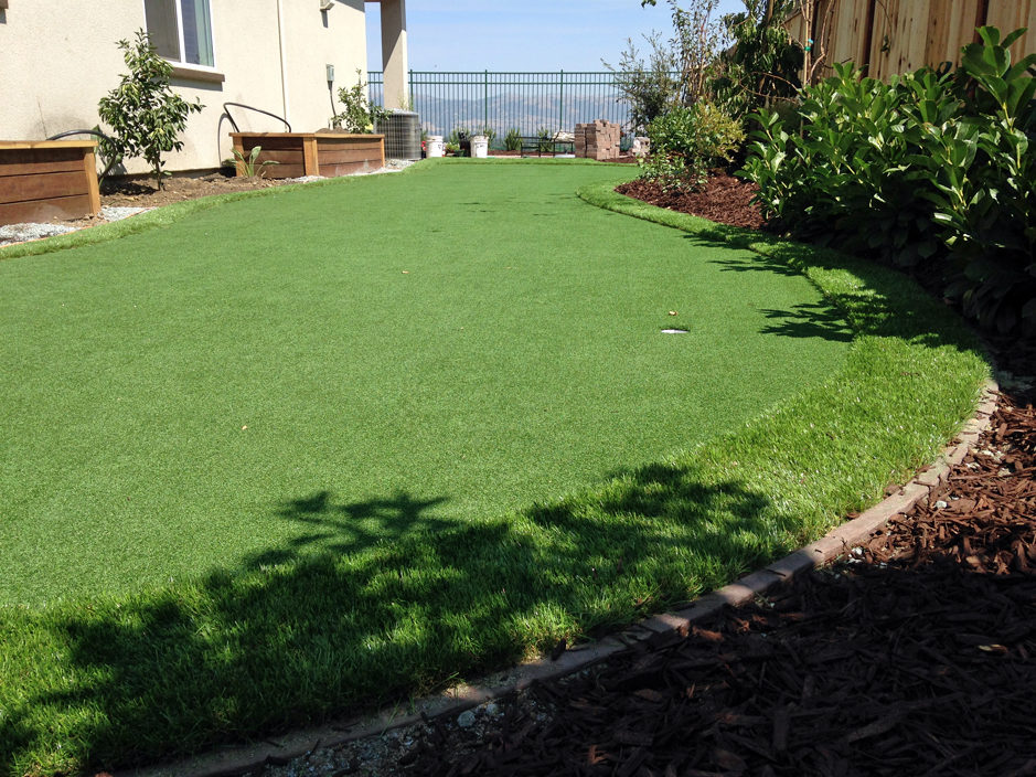 artificial turf cost best synthetic fresno california - Synthetic Grass Cost