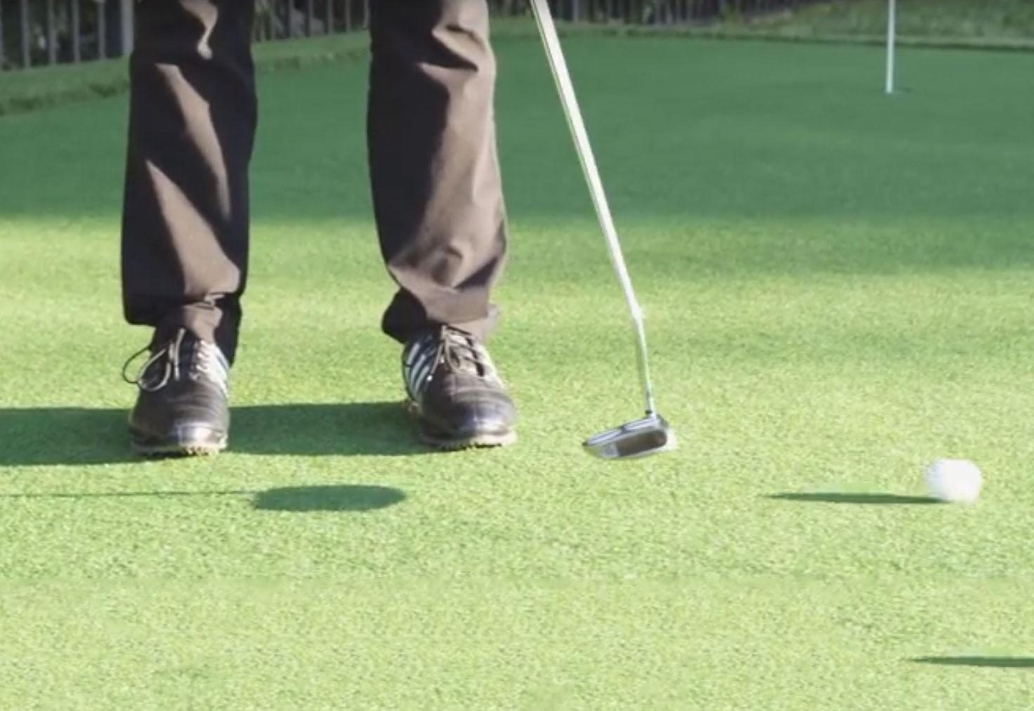 putting greens golfer ball