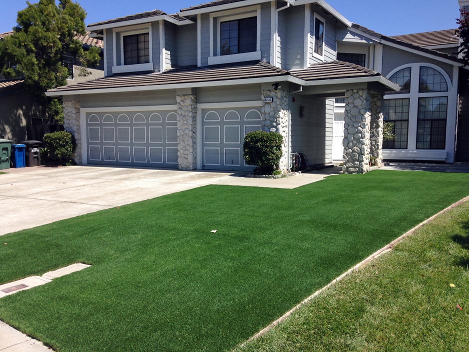 Artificial Grass Installation in Union City, California