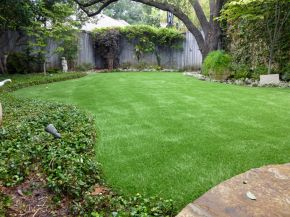 Artificial Grass Installation in Grapevine, Texas
