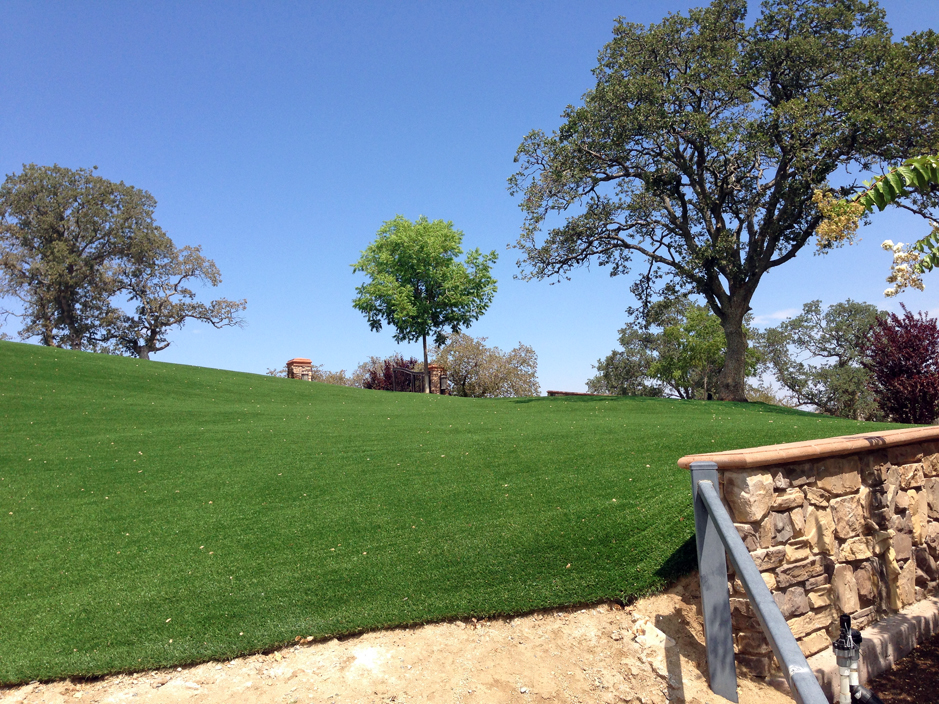 Artificial Grass Installation in San Luis Obispo, California