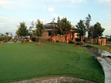 Artificial Grass - Artificial Grass, Synthetic Grass in Sacramento, California