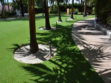 Artificial Grass - Artificial Grass Installation in Jacksonville, Florida