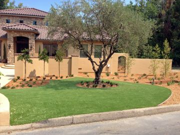 Artificial Grass - Artificial Grass Installation in Irvine, California