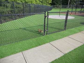 Artificial Grass - Artificial Grass Installation in Raleigh, North Carolina