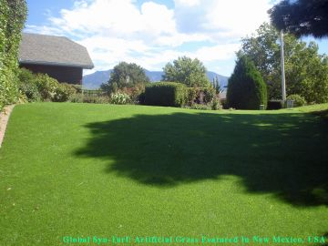 Synthetic Lawn Albuquerque New Mexico Bernalillo County