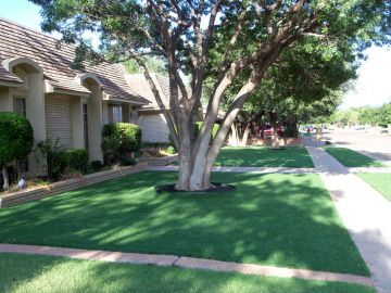 Artificial Grass - Artificial Grass Installation in Abilene, Texas
