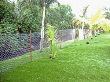 Artificial Grass - Artificial Grass Installation In Brandon, Florida