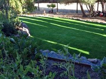 Artificial Grass - Artificial Grass Installation in Visalia, California