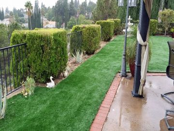 Artificial Grass - Artificial Grass Installation in Murrieta, California