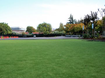 Artificial Grass - Artificial Grass Installation In Lakewood, California