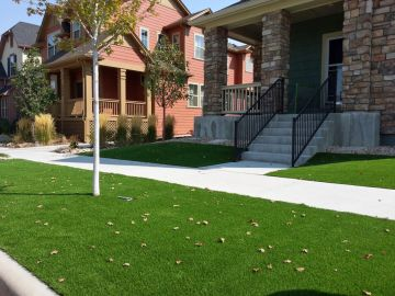 Artificial Turf Residential | Fake Grass Aurora Florida
