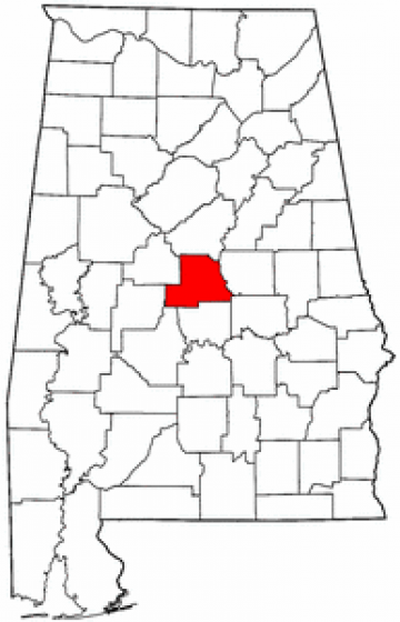 Synthetic Grass Chilton County