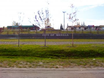 Synthetic Grass Wasilla