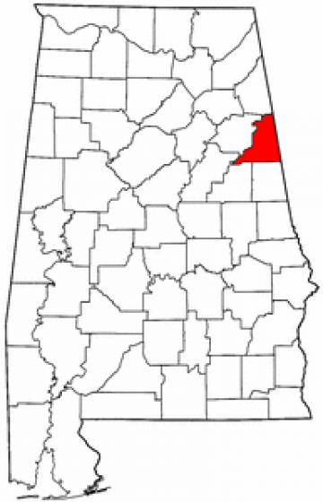 Synthetic Grass Cleburne County