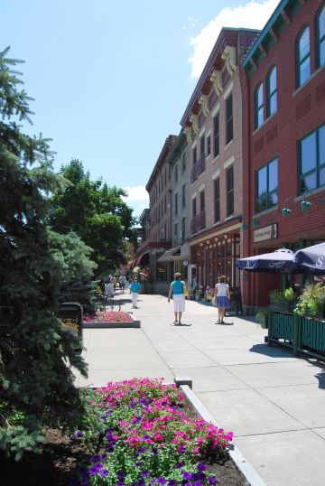 Synthetic Grass Saratoga Springs