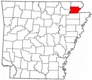 Synthetic Grass Greene County
