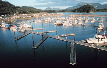 Synthetic Grass Hoonah