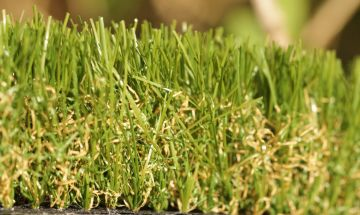 Artificial synthetic fake grass turf green olive green brown thatch plushy soft durable natural lawn realistic turf
