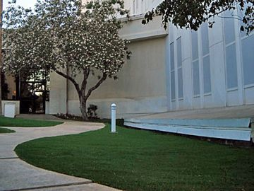 Artificial Grass - Artificial Grass Installation In Milwaukee, Wisconsin