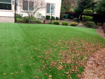 Artificial Grass - Artificial Grass Installation in Norfolk, Virginia