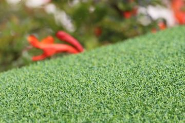 Synthetic turf for Putting Greens