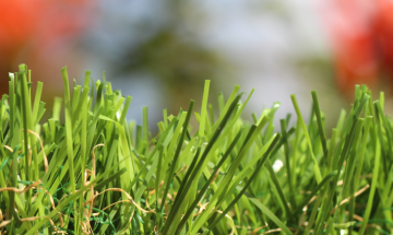 Best Synthetic Turf Deals