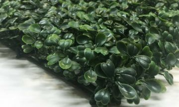 Boxwood shrubs always green artificial boxwood plant decorative fencing fences greenery artificial plants screen panels patio