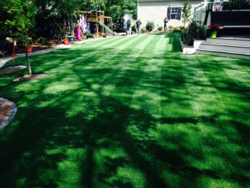 Green Grass Carpet | Artificial Turf Gardena California