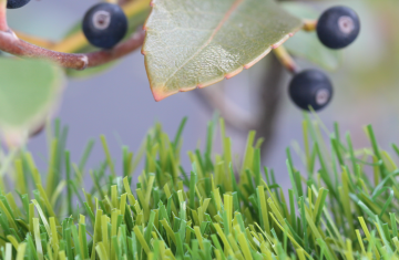 Artificial Grass Technologies Olive Series