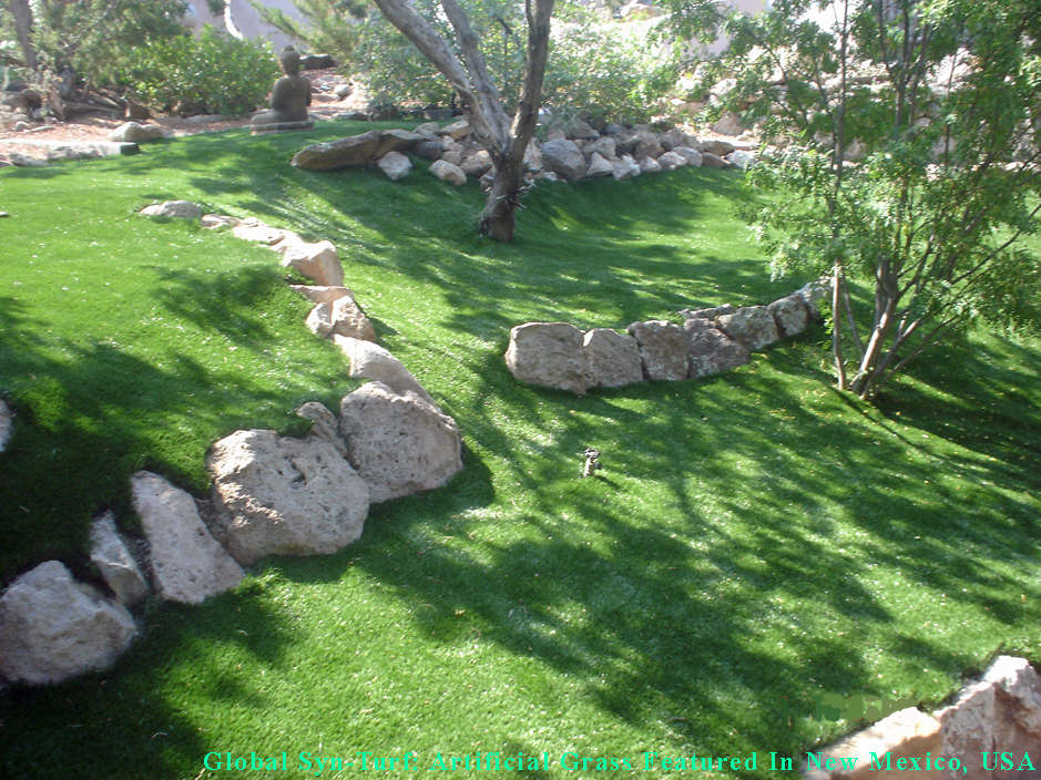 Artificial Grass Synthetic Turf Las Cruces New Mexico