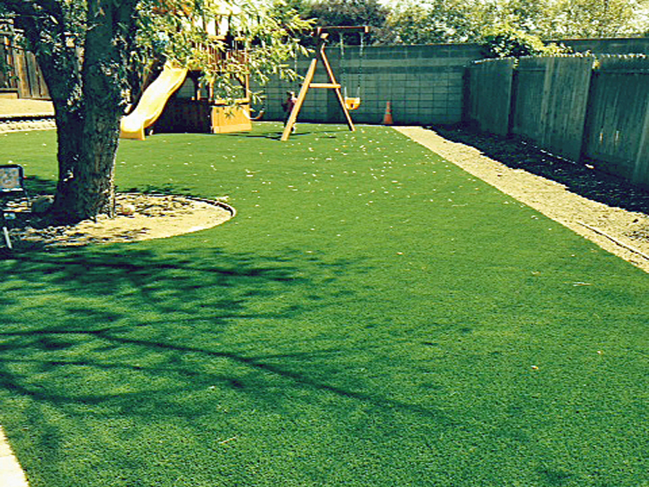 Fake grass for lawn artificial turf pinole california for Best grass for garden