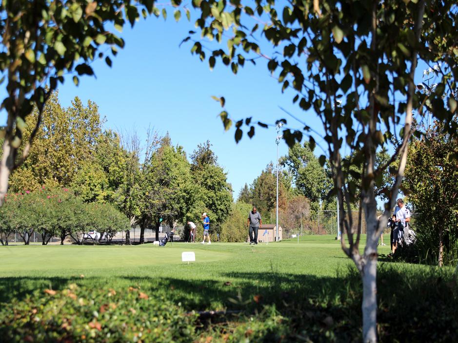 Artificial Grass Installation in Indio California
