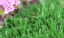 Artificial Grass artificial-grass-emerald-40-1.png