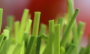 Artificial Grass artificial-grass-spring-46-4.png
