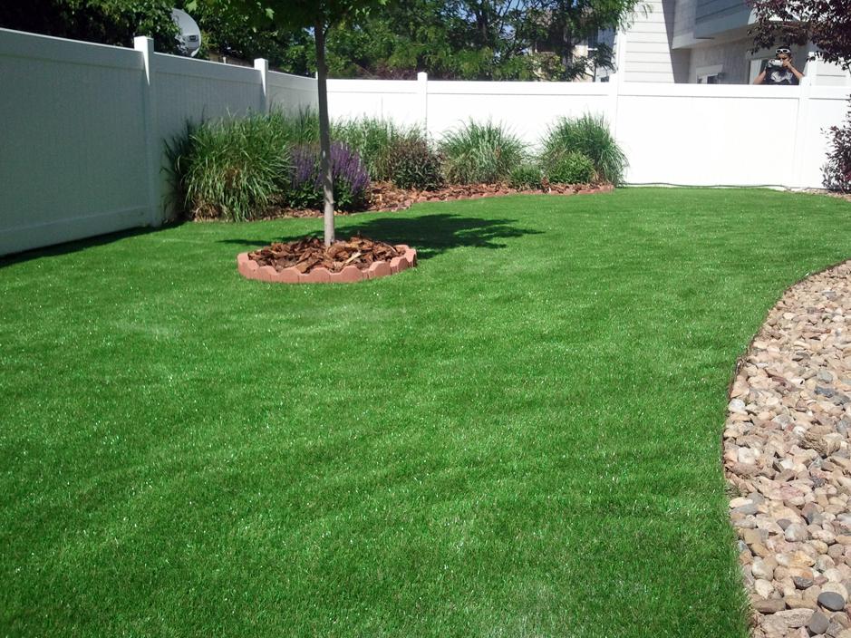 Best synthetic grass berkeley california alameda county for Best grass for garden