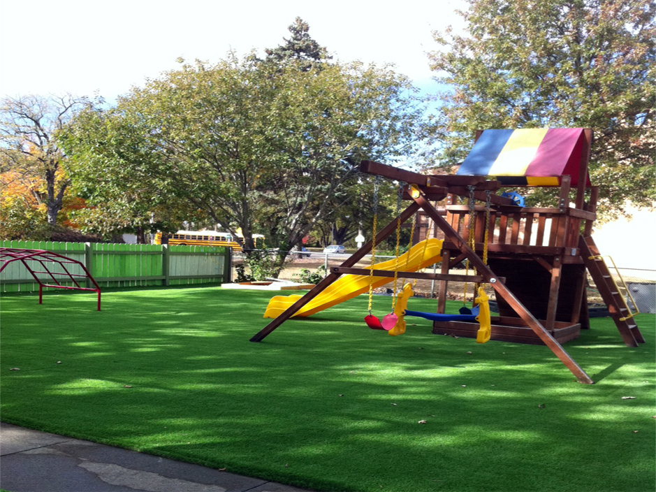 Artificial Grass, Synthetic Grass Berkeley, Alameda County, California