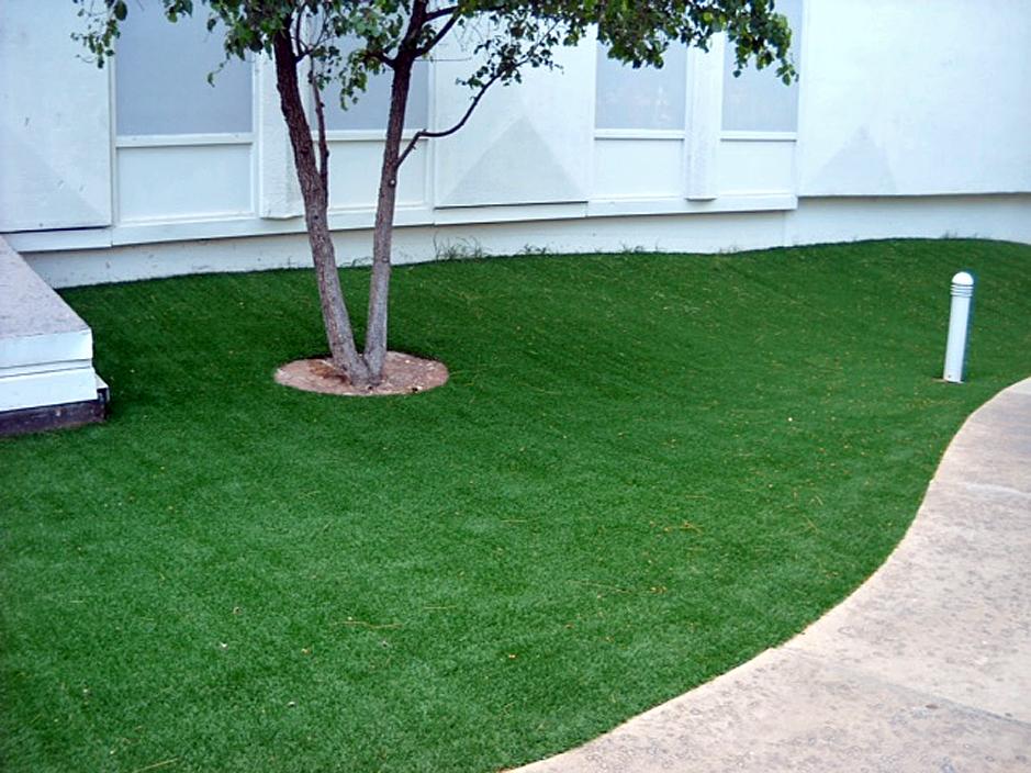 Artificial Grass Installation In San Anselmo, California