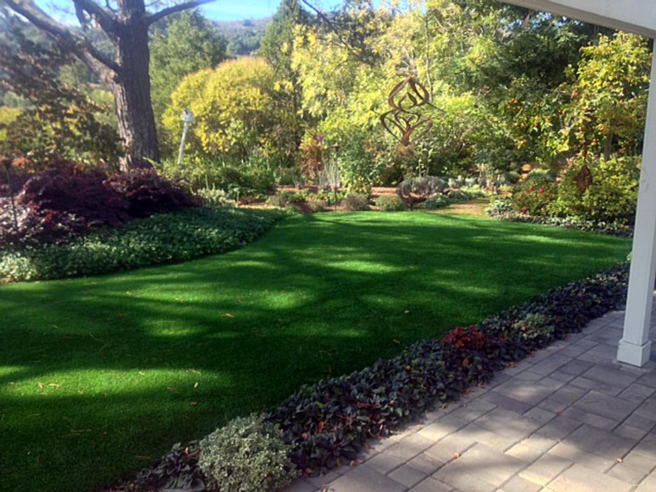 Install artificial grass edinburg texas hidalgo county for Landscape design michigan