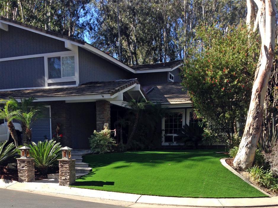 Artificial Grass Installation in Harbison Canyon, California