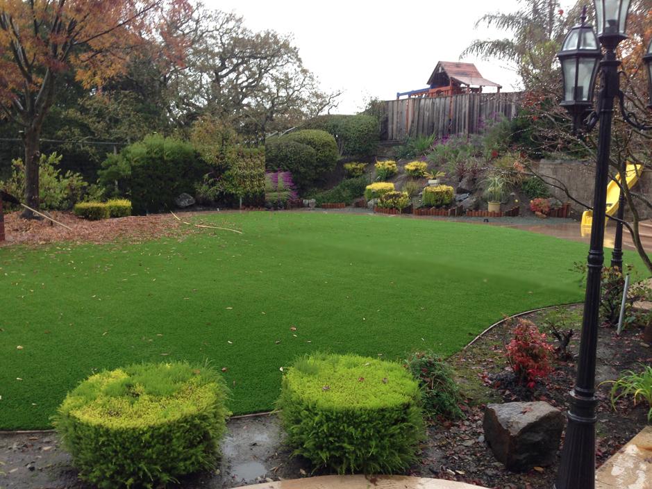 Artificial Grass Installation In Hercules, California