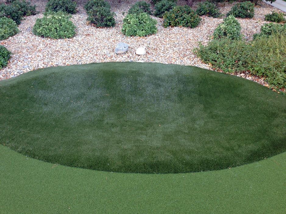 Artificial Lawn Grass Lexington Kentucky Fayette County