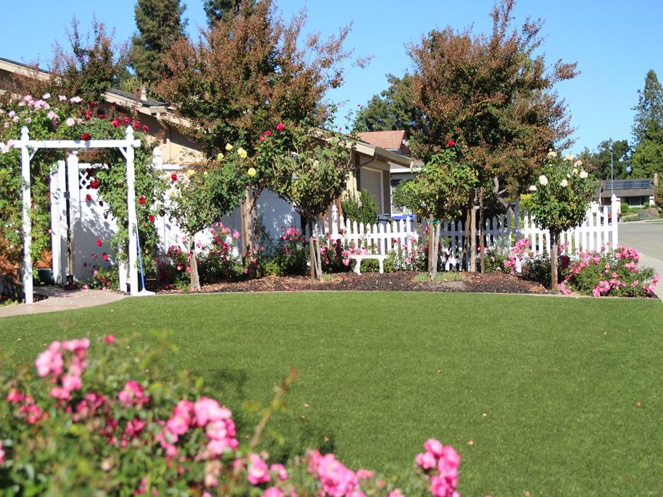 Artificial Grass Installation In Valley Center, California
